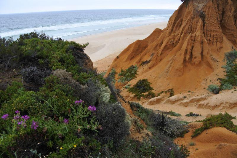 DSC_2663 Sand und Regen